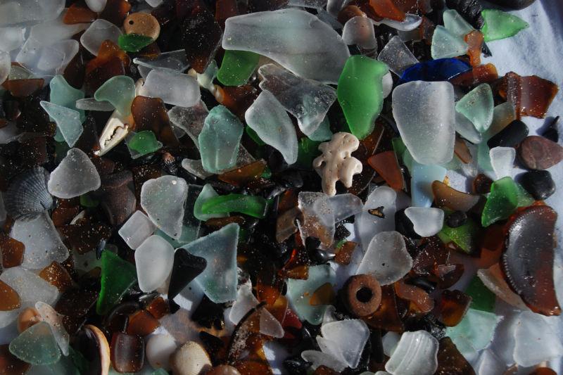 Beach Glass and Shark's Teeth