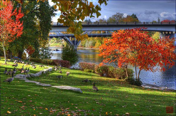 Autumn in Riverside Park