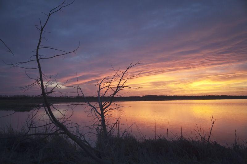sunset over the salt marsh