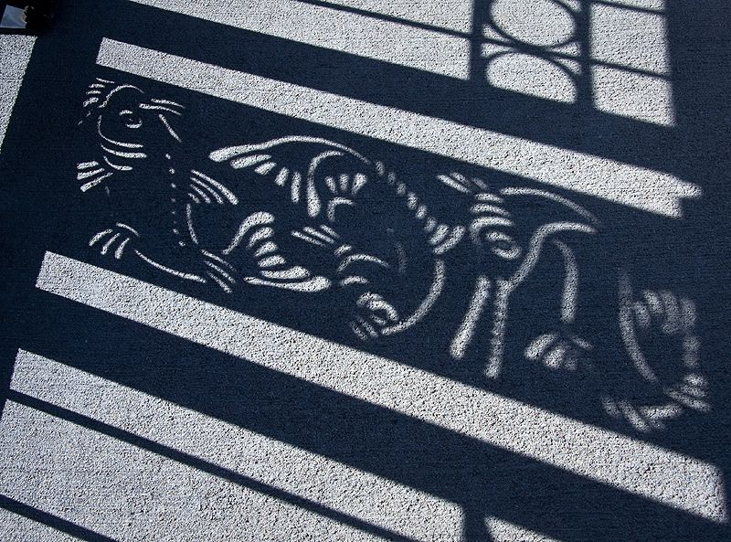 shadow of bridge detail