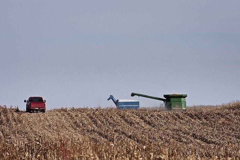 Corn Harvest on the Kansas Prairie
