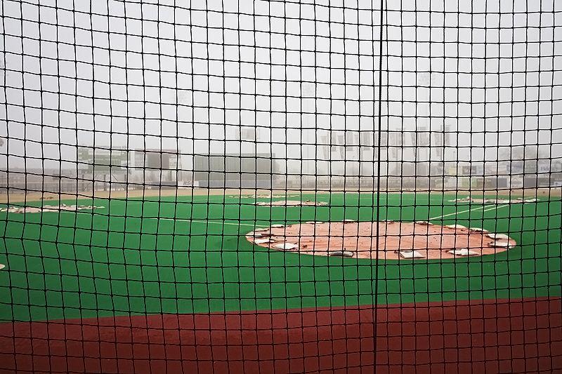 foggy infield in winter