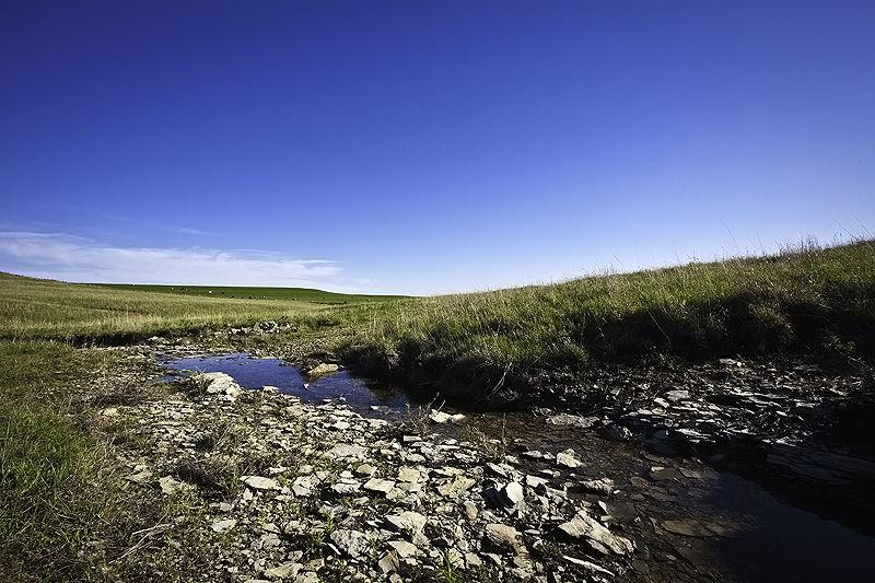 sod rocks and runoff