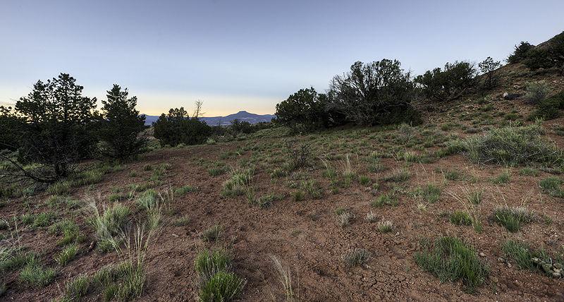 hill view at dawn