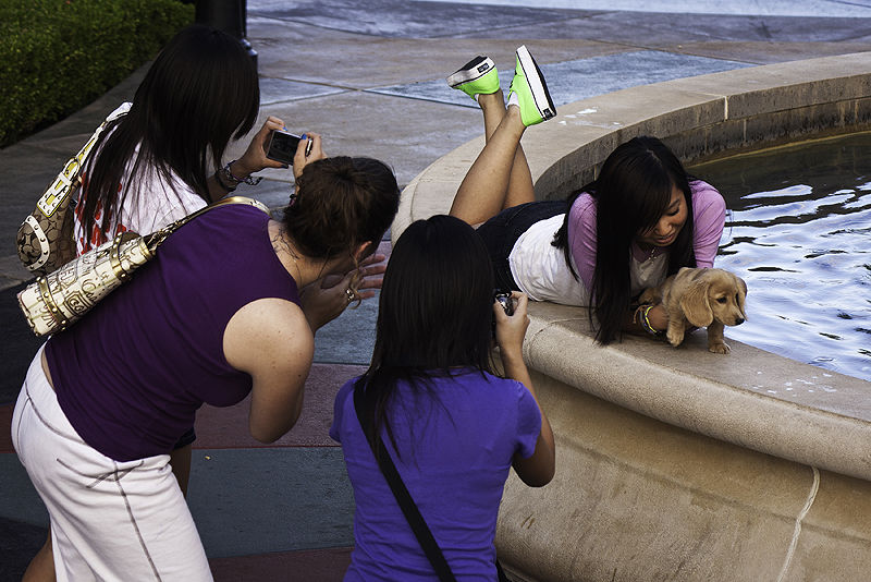 group of girls with puppy at the mall