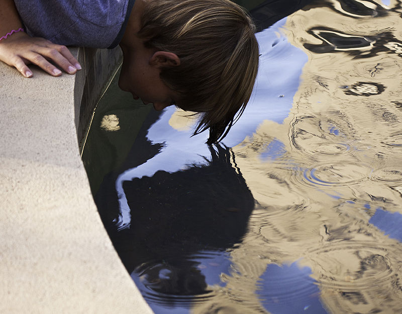 youth looks at reflection in fountain