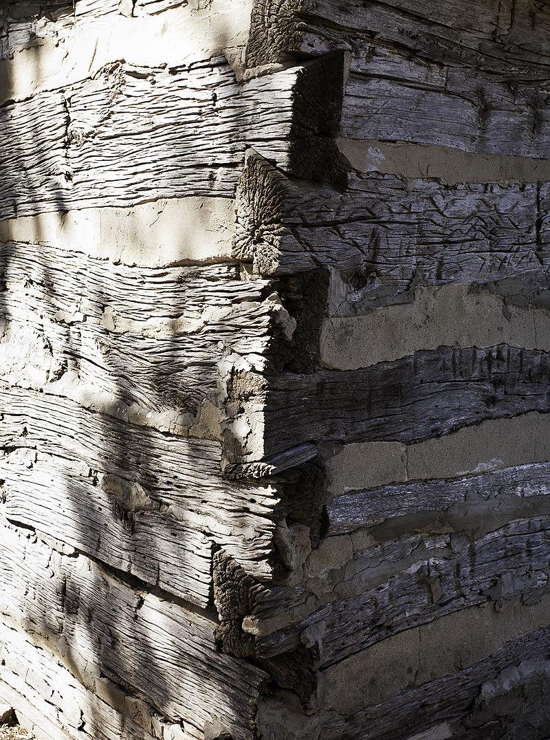 corner of old log structure