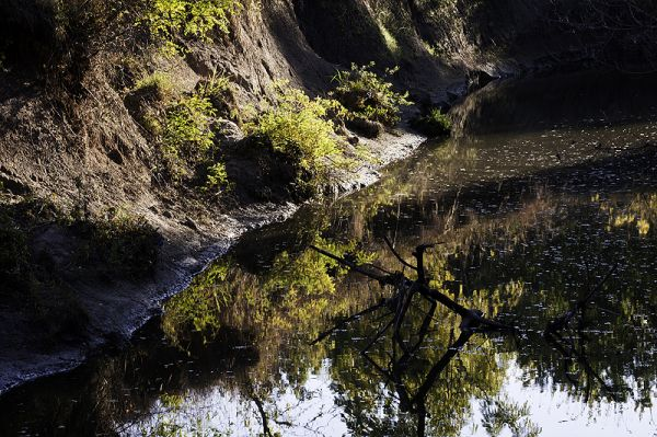 creek bed with reflection