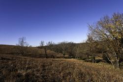 autumn in some kansas hills