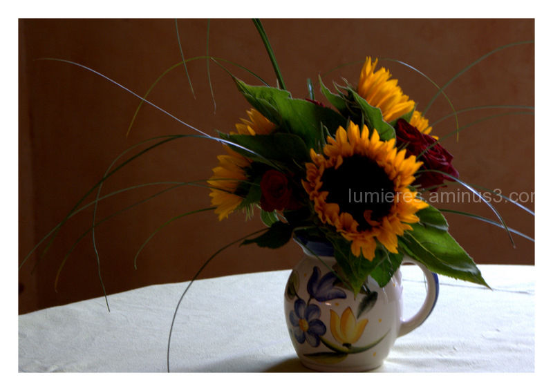 Bouquet de couleurs
