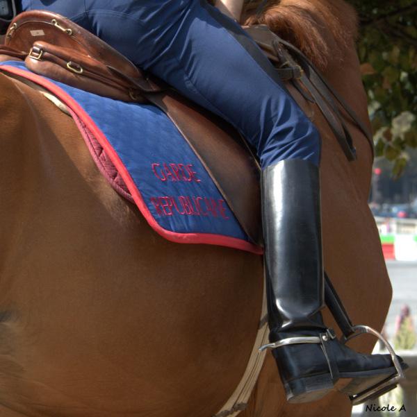 Republican horse gard