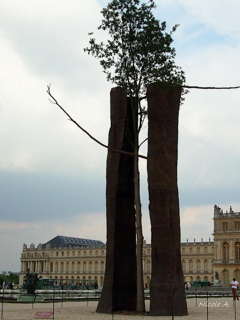 Penone à Versailles 2013