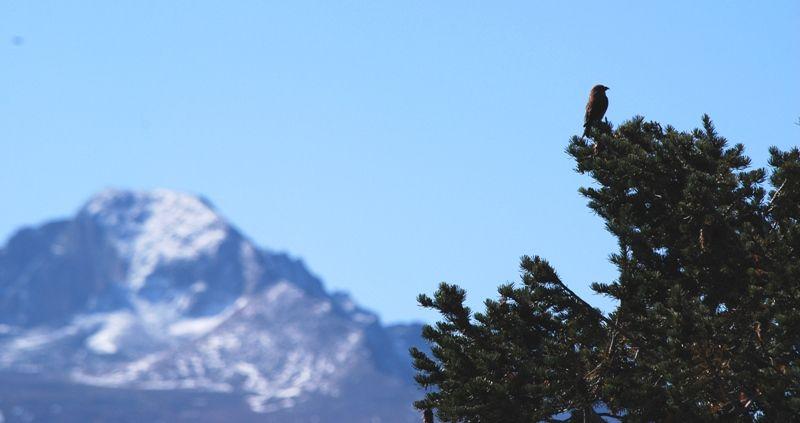 Estes Park, Rocky Mountains, Colorado