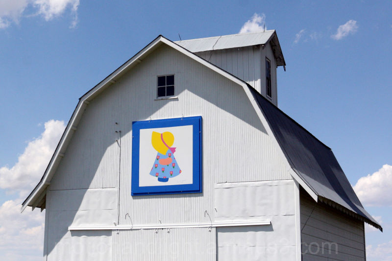 Grandma's Barn Quilt
