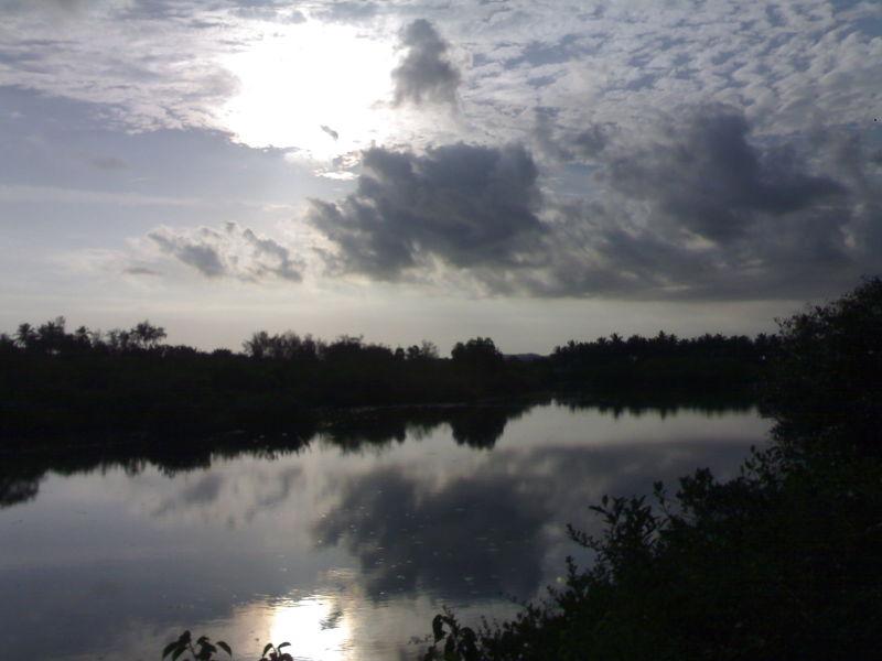 Sun-lit River