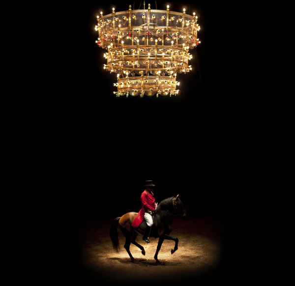 Horse rider www.image-k.com