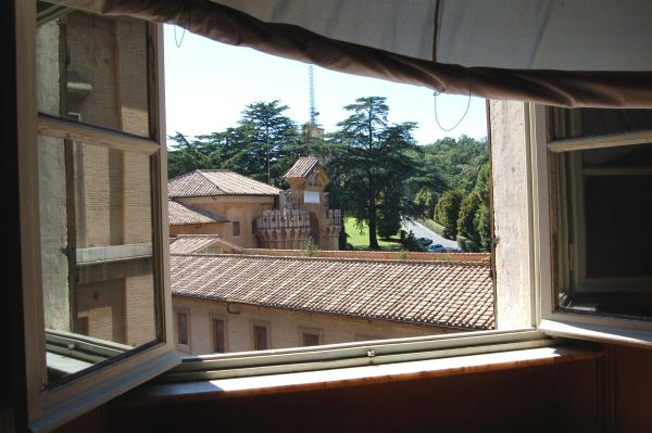 View from the Window