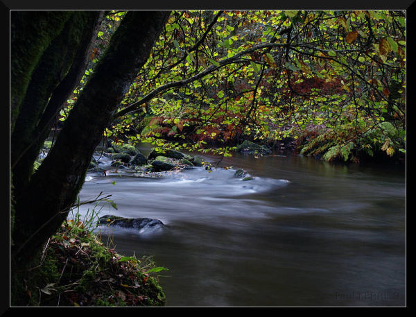Autumn in Stangala