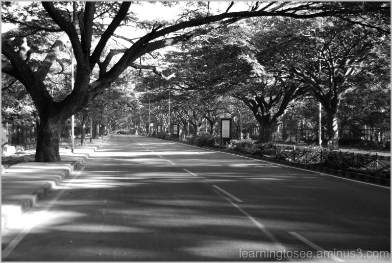 Roads are never this empty......