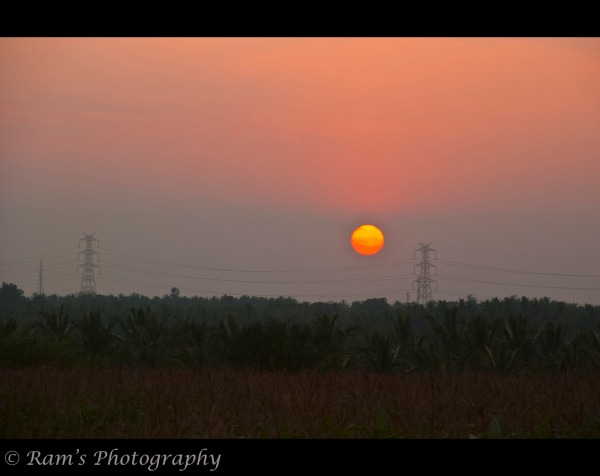 A beautiful Sunset amidst the paddy fields...