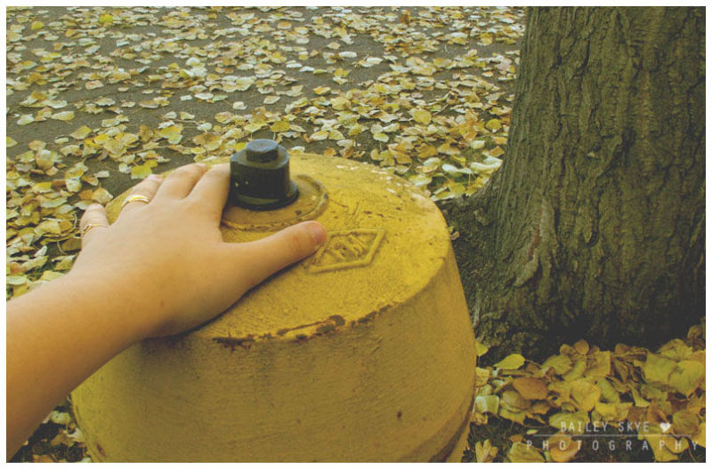 Ringed Hand Upon A Firehydrant