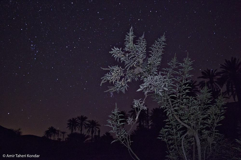 Wonderful Starry Nights of Kondar Manoojan Kerman