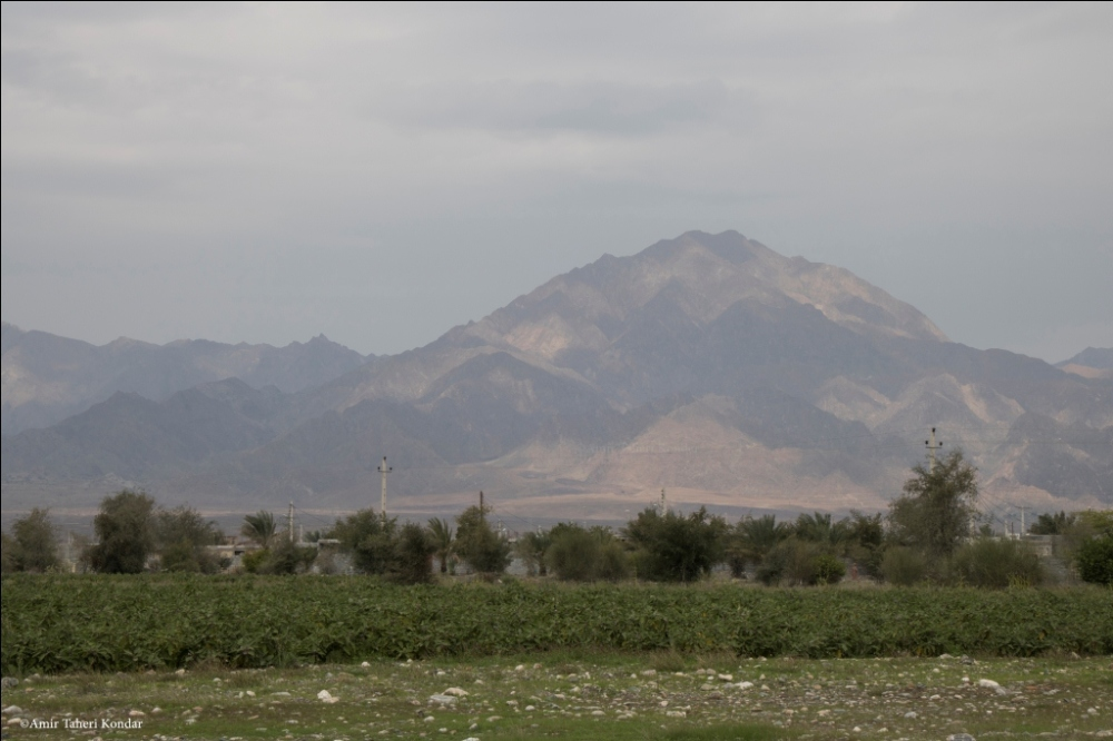 Agriculture of Abnema and Gorom Mount - Rudan