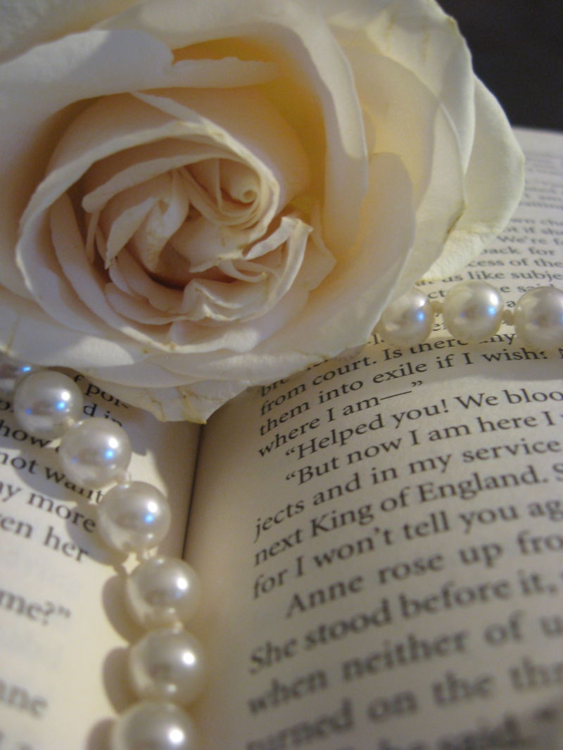 A rose with pearls in a book