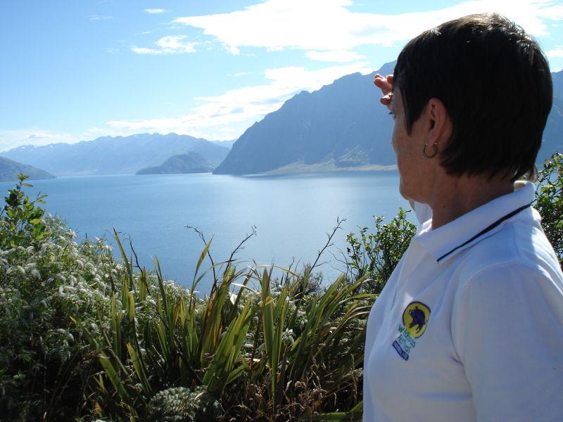 looking at the lake