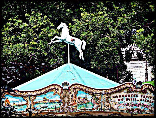 Le Paradis des chevaux *
