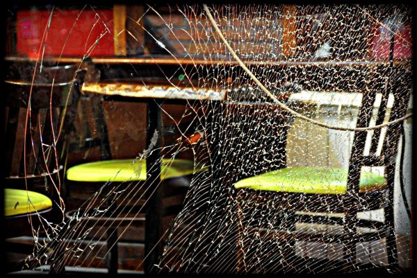 Aux mygales de verre