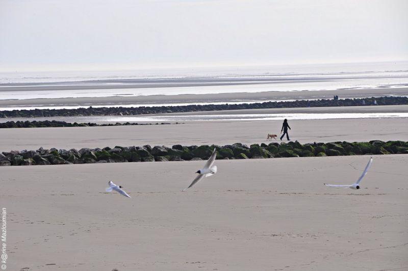Marchande de sable