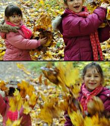 Les feuilles mortes se ramassent à... l'appel !