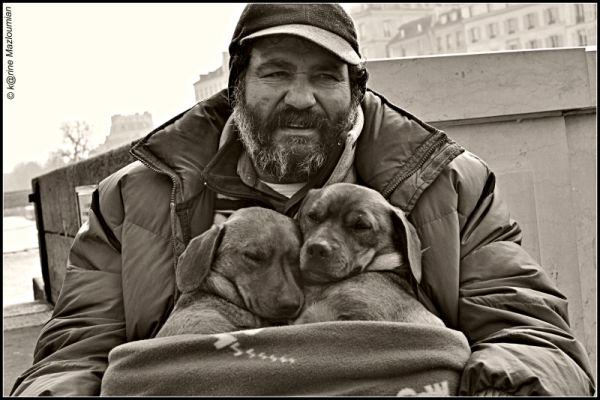 Boule & Bill au ♡ de la Moldavie (histoire vraie)