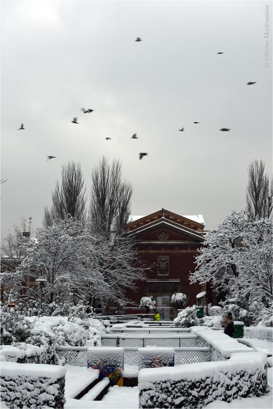 Envol de fin d'hiver