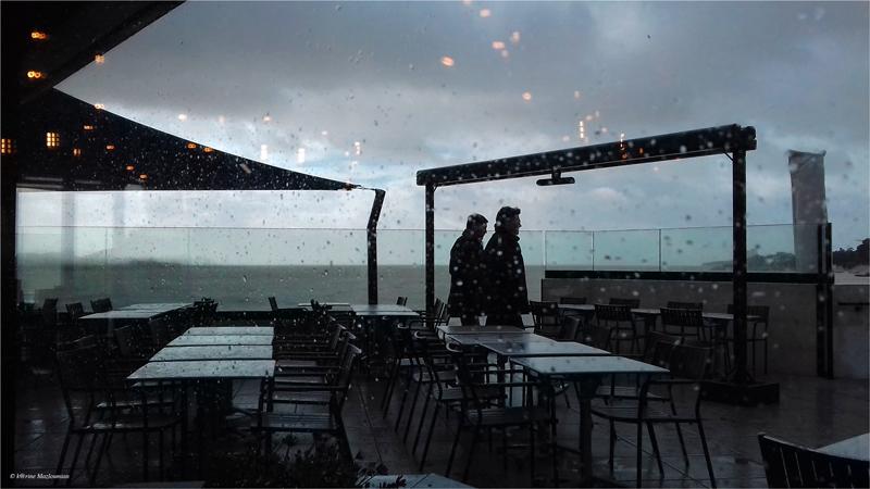 Serene in the rain