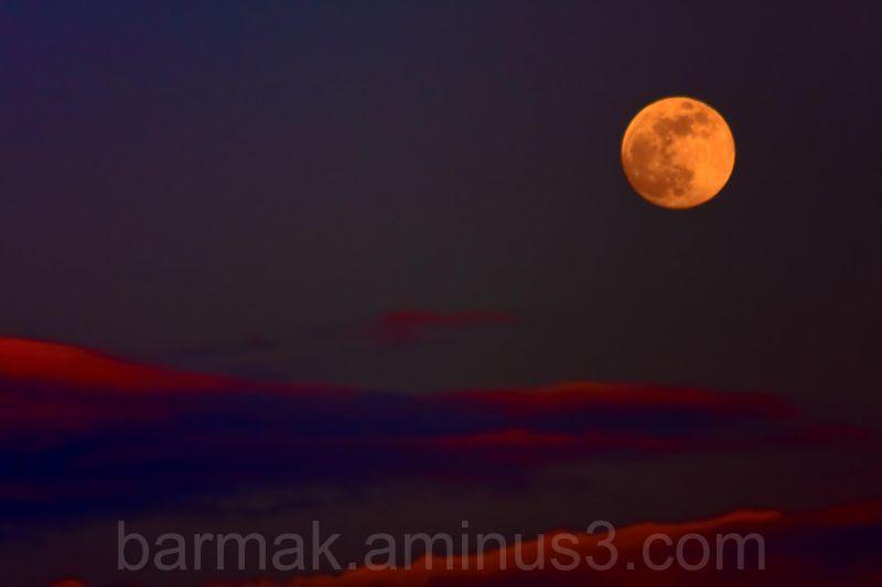 Moon Dawn!