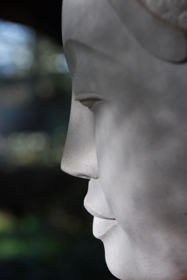 buddha serenity