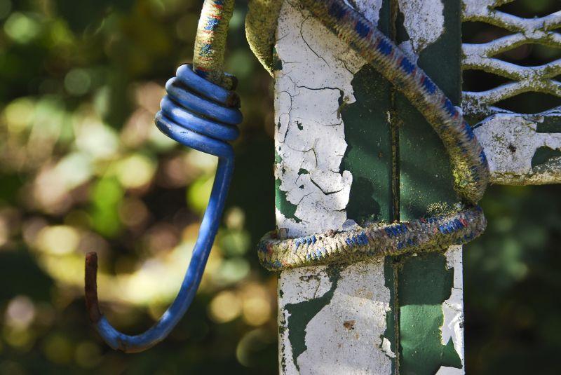 forgotten bungee cord