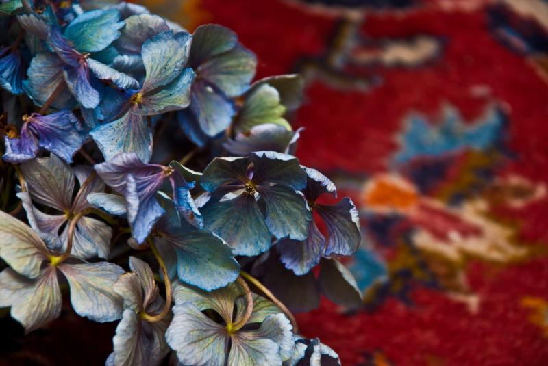 hydrangea turkish rug