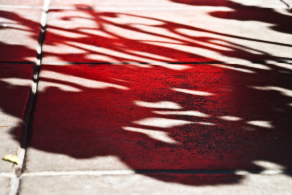 shadow red reflection