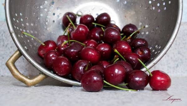 colander of cherries on the counter