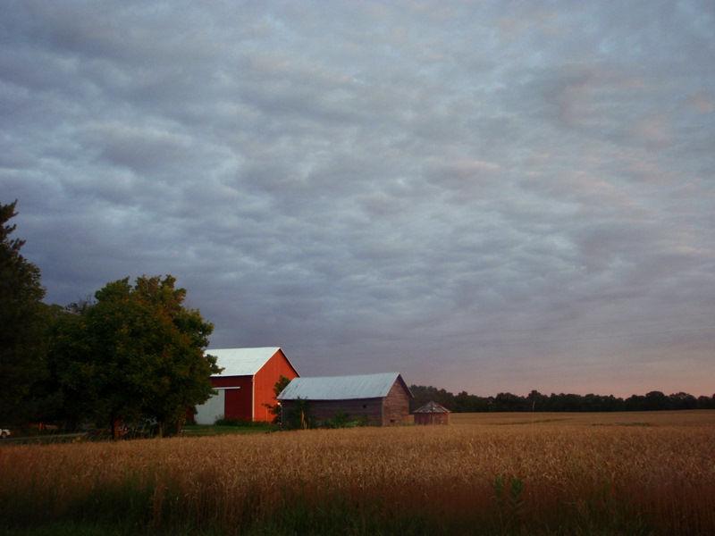 Small Barn at Sunrise