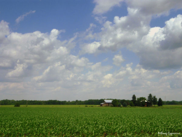 A farm in the distance with Michigan's clouds