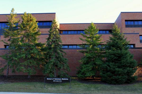 UW Madison Veterinary School