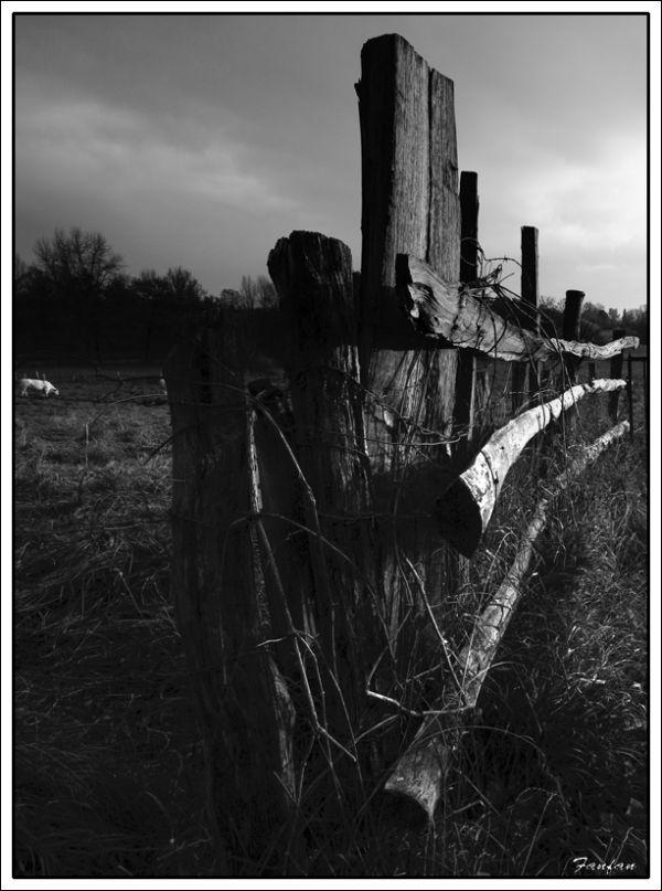 une barrière