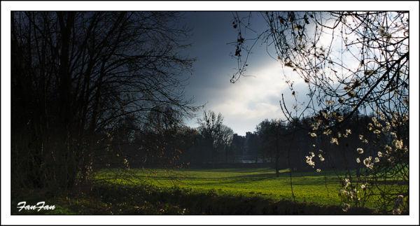 paysage d'hiver en savoie