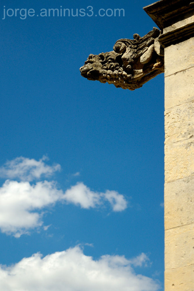 Gargola, Catedral, Medieval, Leon