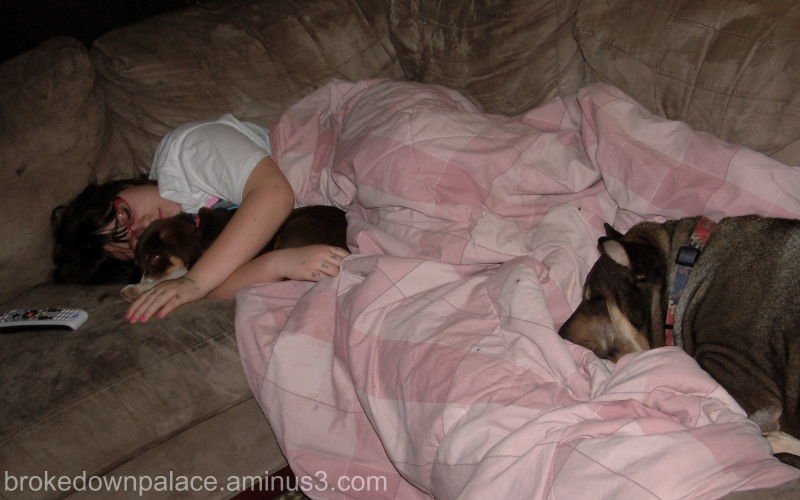 The Teenager asleep with both dogs