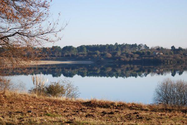 Lac d'Arjuzanx